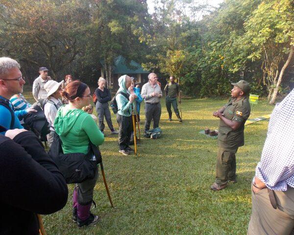 Uganda Birdwatching Tours