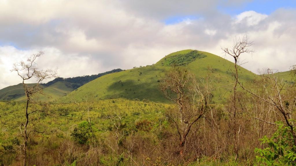 Chyulu Hills Birdwatching