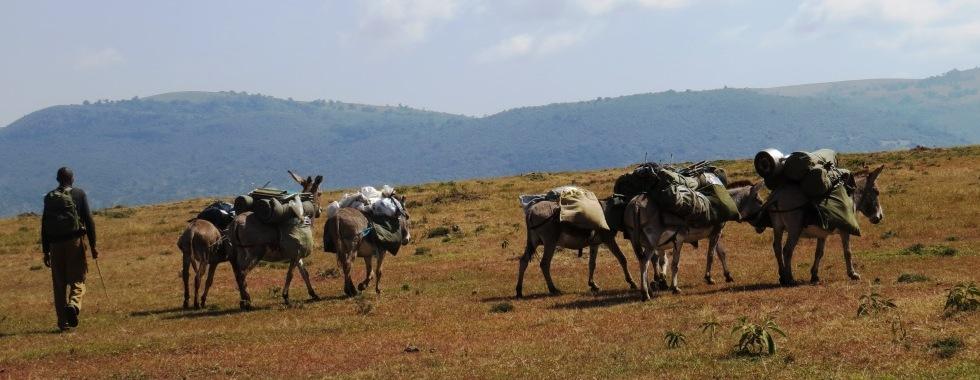 Loita Hills Trek